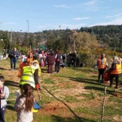 First Aid provision - Enviromental Awareness and tree planting at the two-day event organised by the Municipality of Petroupolis